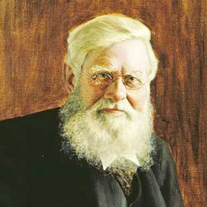 Portrait of Alfred Russel Wallace as an older man
