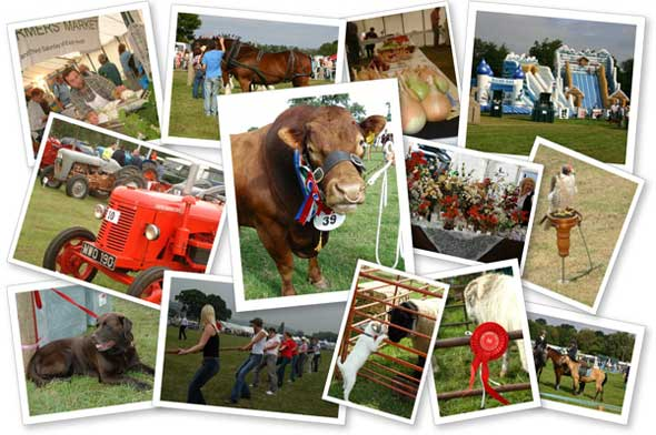 usk show collage